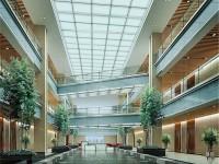 大厅龙8国际pt老虎机设计效果图 (3)